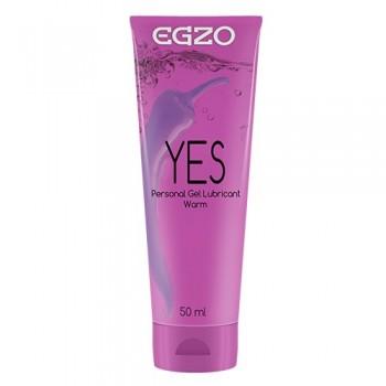 Egzo Yes libesti